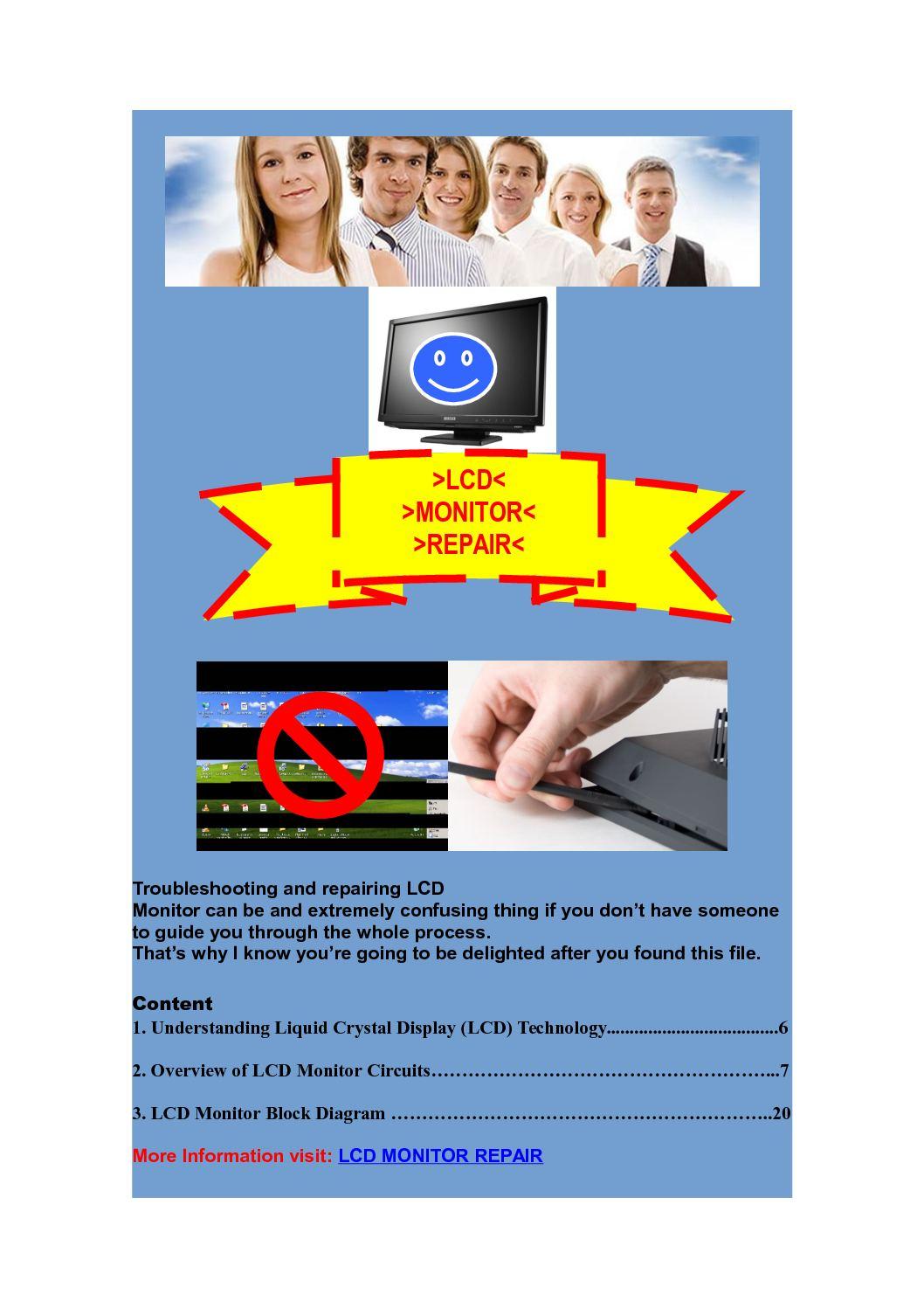 Calamo Professional In Lcd Monitor Repair Block Diagram