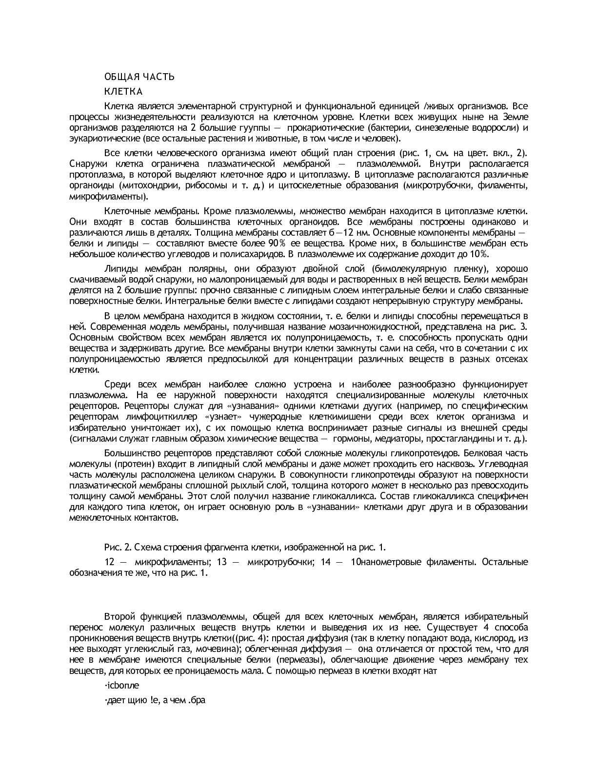 Монобласт