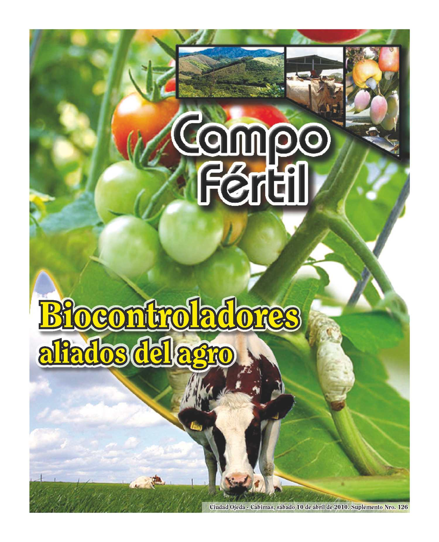 Campo Fertil Nº 126 | Suplemento