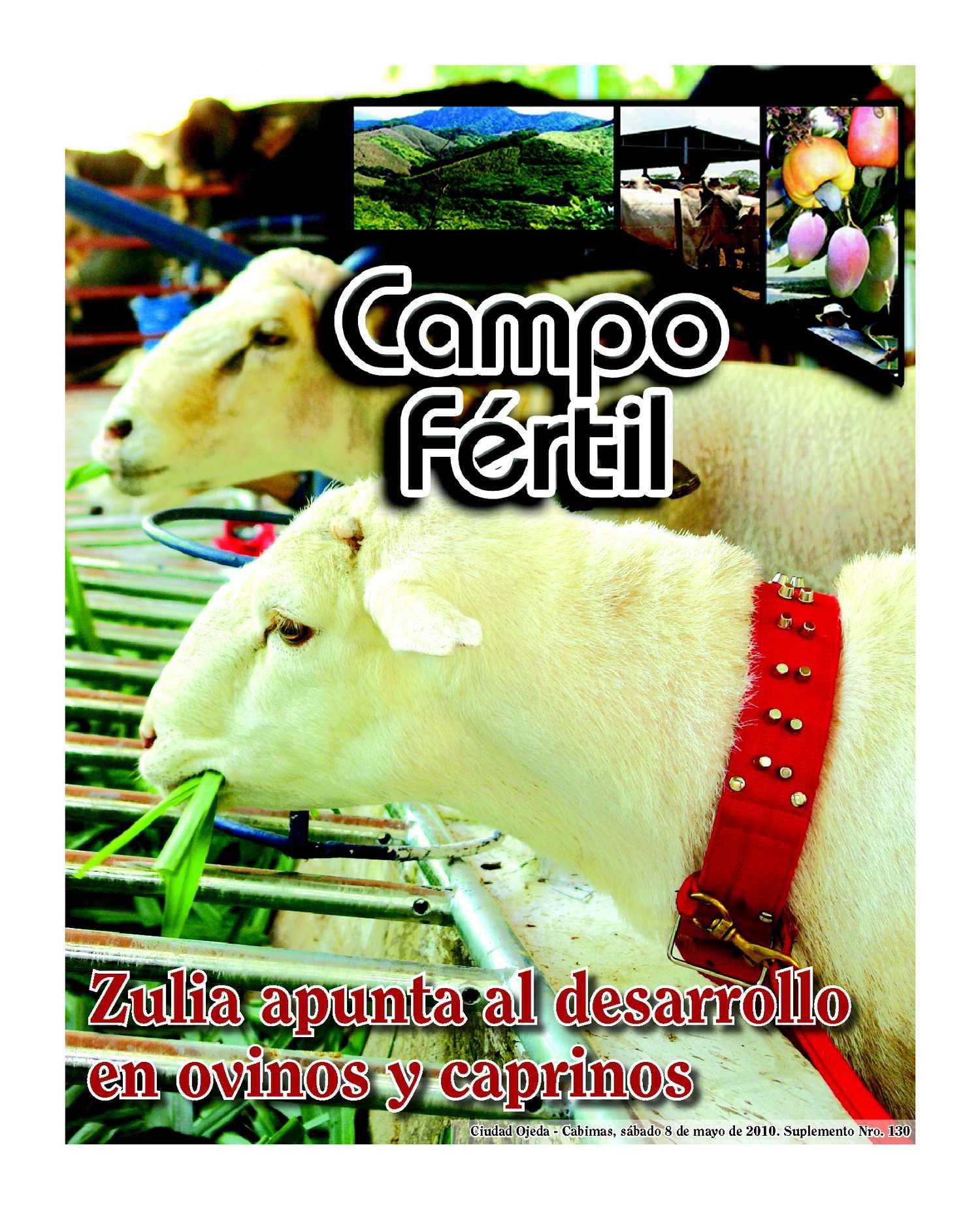 Campo Fertil Nº 130