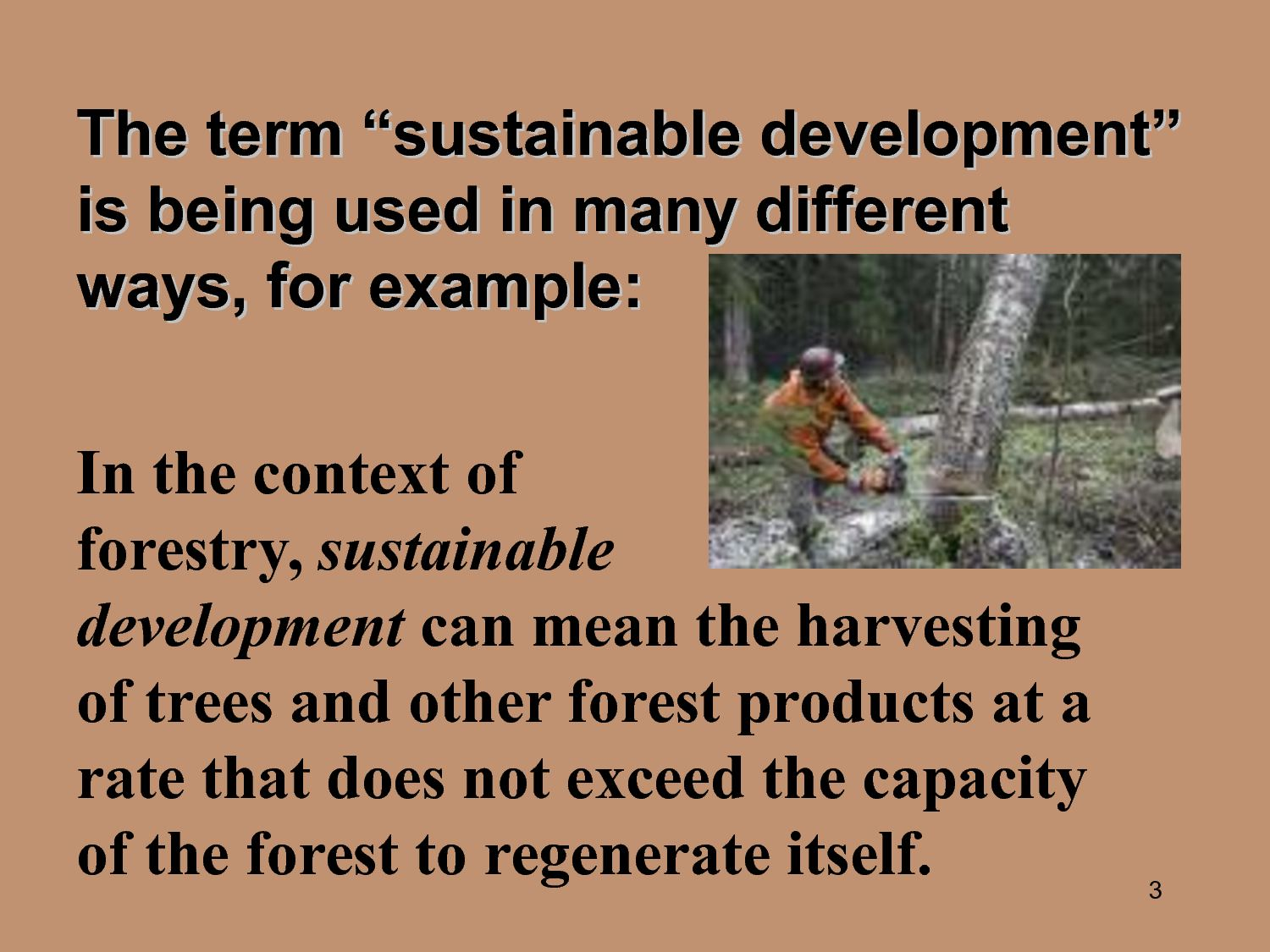 Research Paper On Sustainable Development