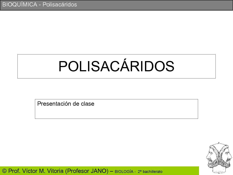POLISACÁRIDOS (Bioquímica)