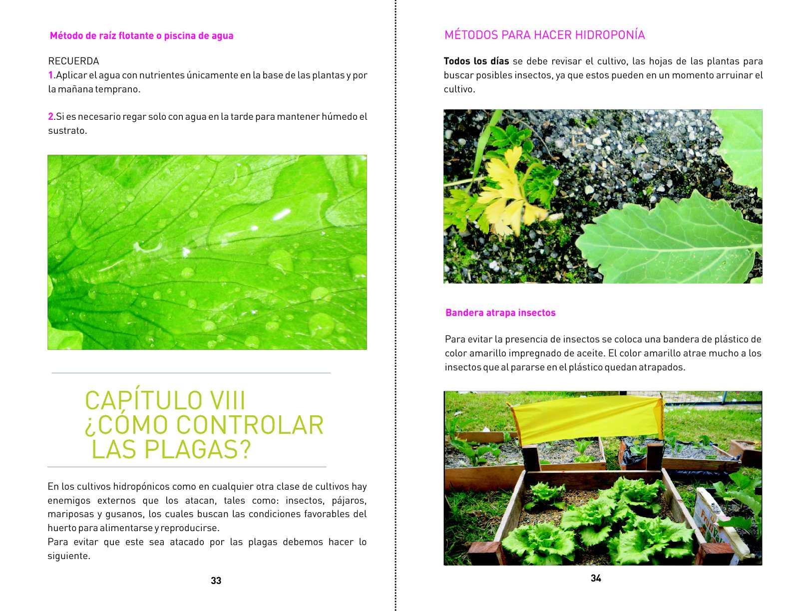 Cultivos Idroponicos Affordable Cultivos Ucbruealesy De Len With  # Muebles Ridodel