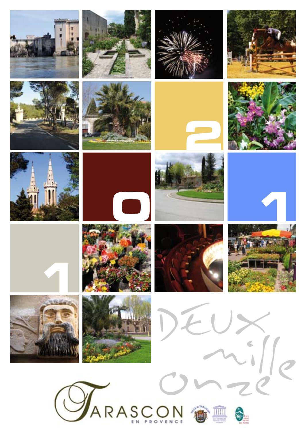 Carte de Voeux pour 2011