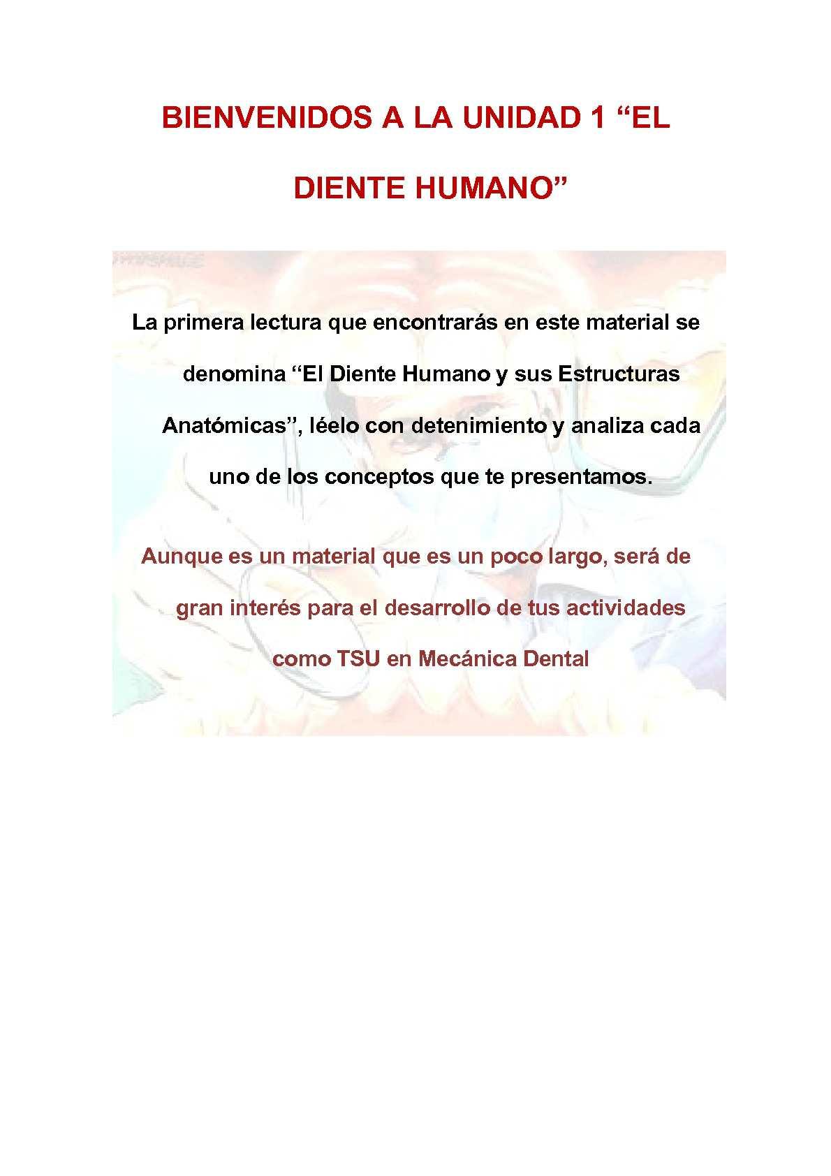 Calaméo - Lectura Nº1: El Diente Humano y sus Características Anatómicas