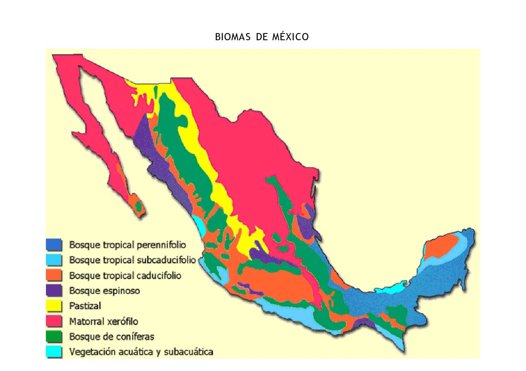 cabo san lucas maps with Biomas De Mexico Mapa on Hotel Review G150812 D596668 Reviews Hotel Riu Palace Riviera Maya Playa del Carmen Yucatan Peninsula furthermore Cozumel Tourist Map furthermore Acapulco Bay Tourist Map additionally La Paz 1 as well Mexico beaches.