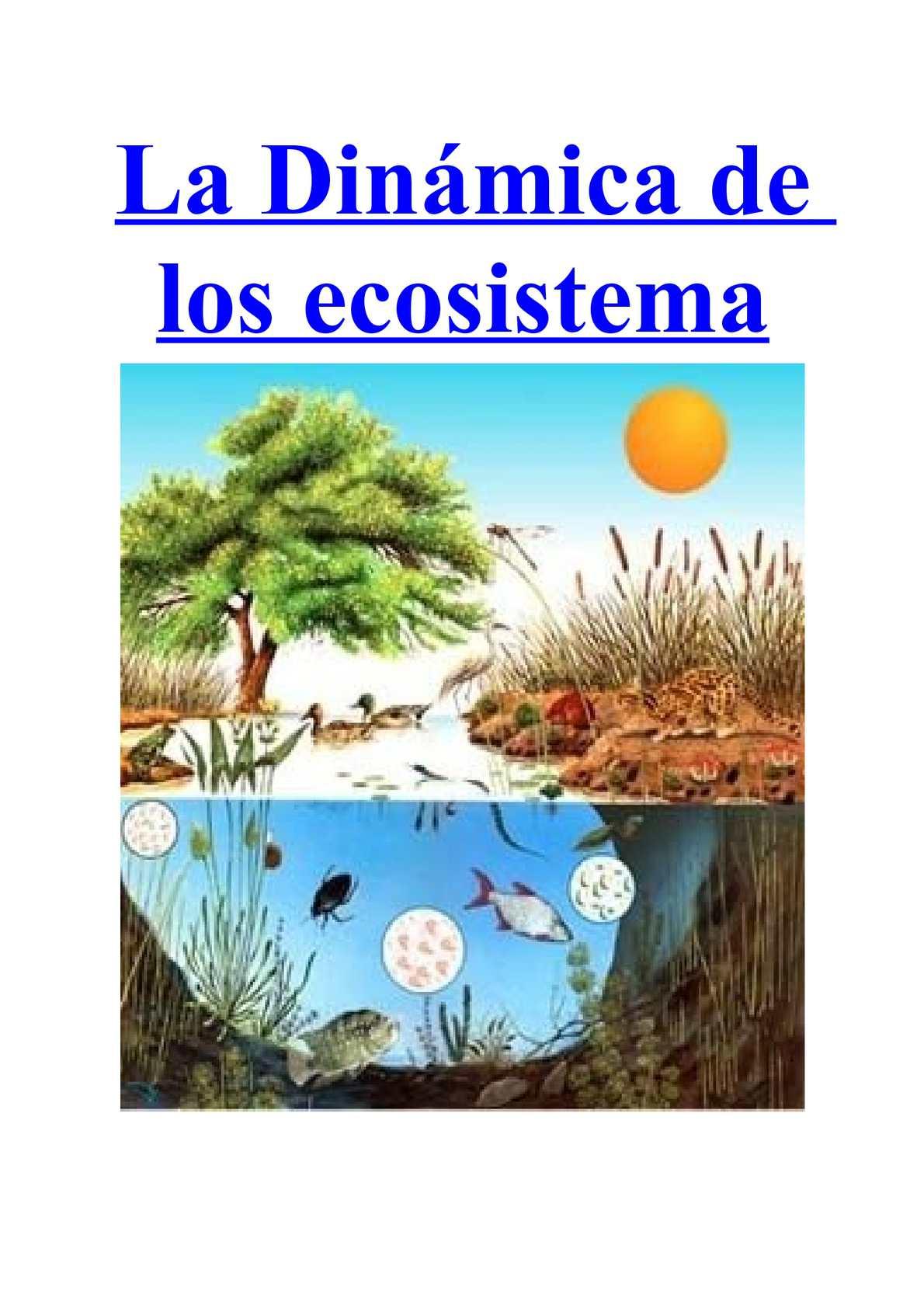 Ecologia terrestre