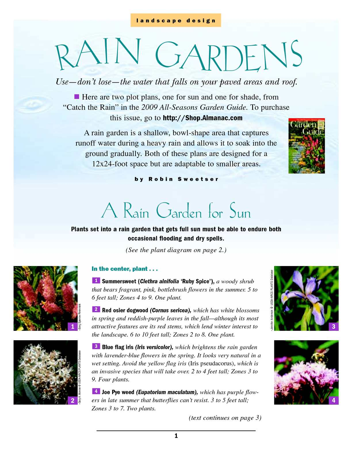 Calamo Nh Rain Garden Landscape Design