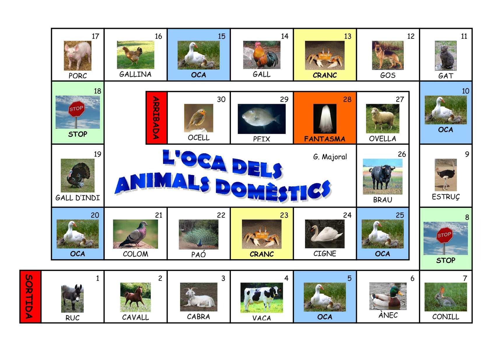OCA ANIMALS DOMÈSTICS