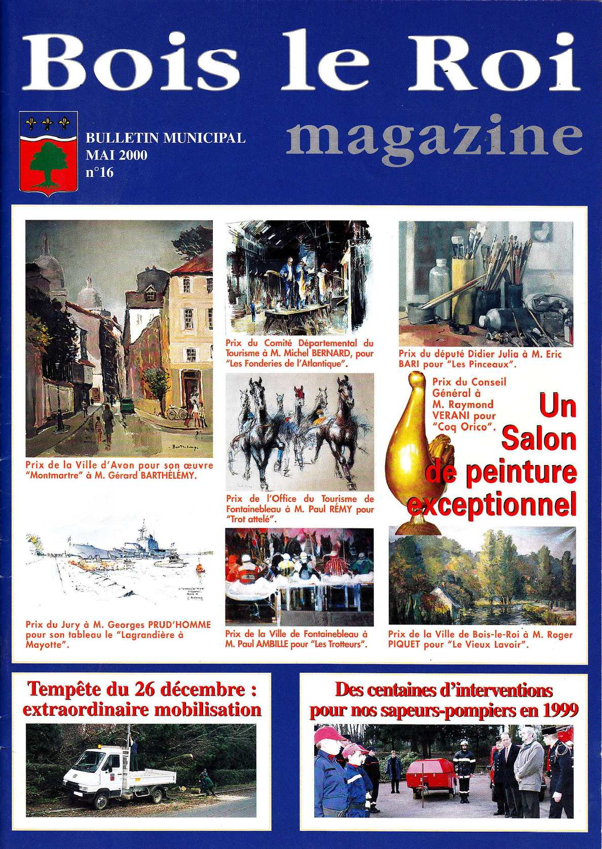 Calaméo Bois le roi Magazine 2000 # Triathlon Bois Le Roi