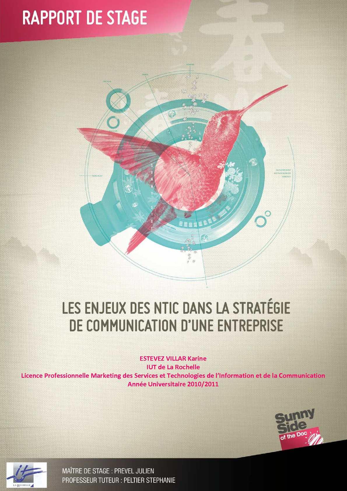 Enjeux des NTIC dans la stratégie de communication d'une entreprise