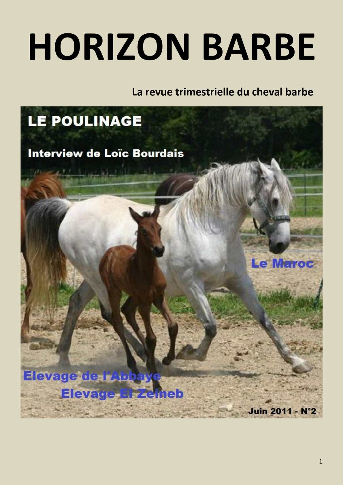 Horizon Barbe, n°2 revue trimestrielle du cheval Barbe