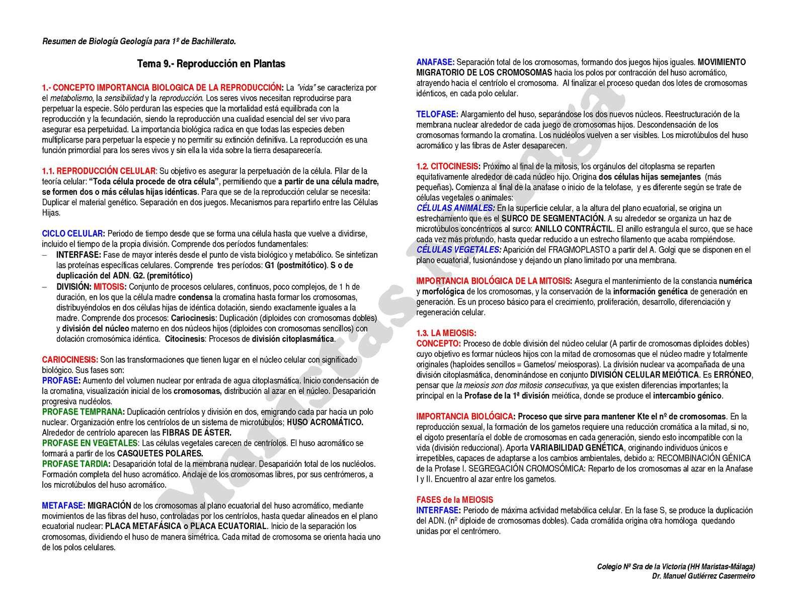 1º BAC-RESUMEN TEMA 09 Reproduccion en plantas