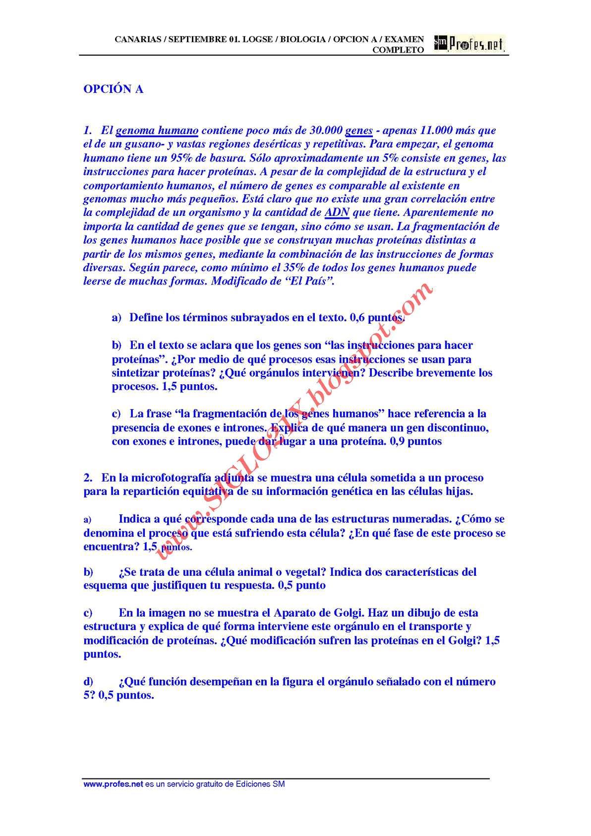 Calaméo - BIOLOGIA-SELECTIVIDAD-EXAMEN RESUELTO 4 CANARIAS-www ...