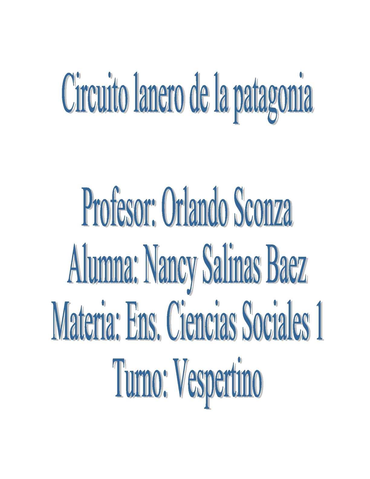 Circuito Productivo : Calaméo los circuitos productivos estado y territorio argentino