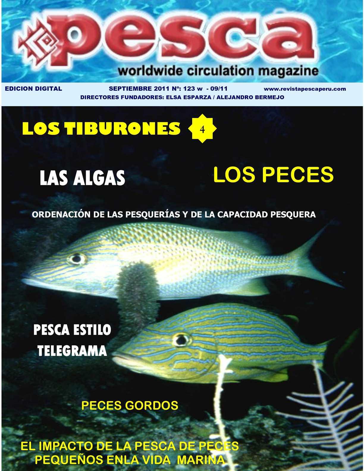 Calaméo - Revista Pesca setiembre 2011