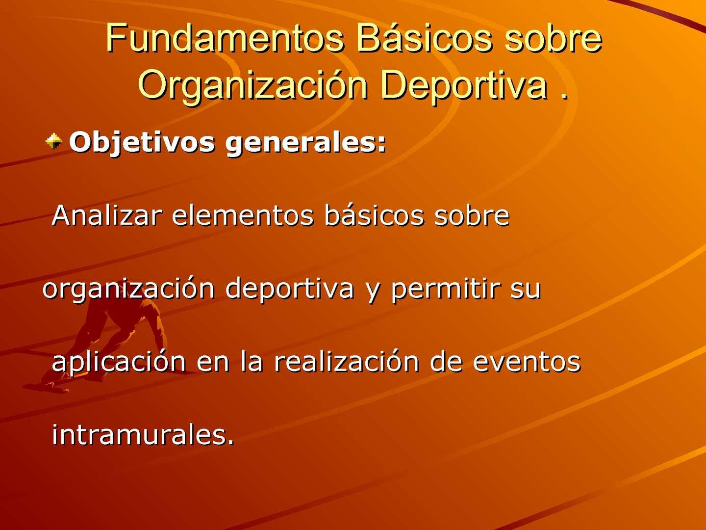 Fundamentos básicos sobre organización