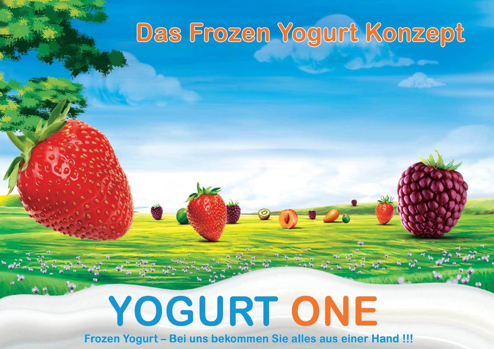 calam o frozen yogurt franchise geld. Black Bedroom Furniture Sets. Home Design Ideas