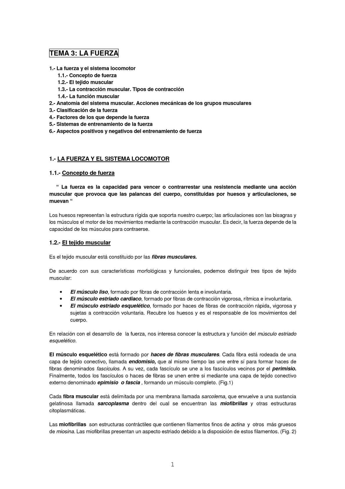 Calaméo - Fuerza Bachillerato