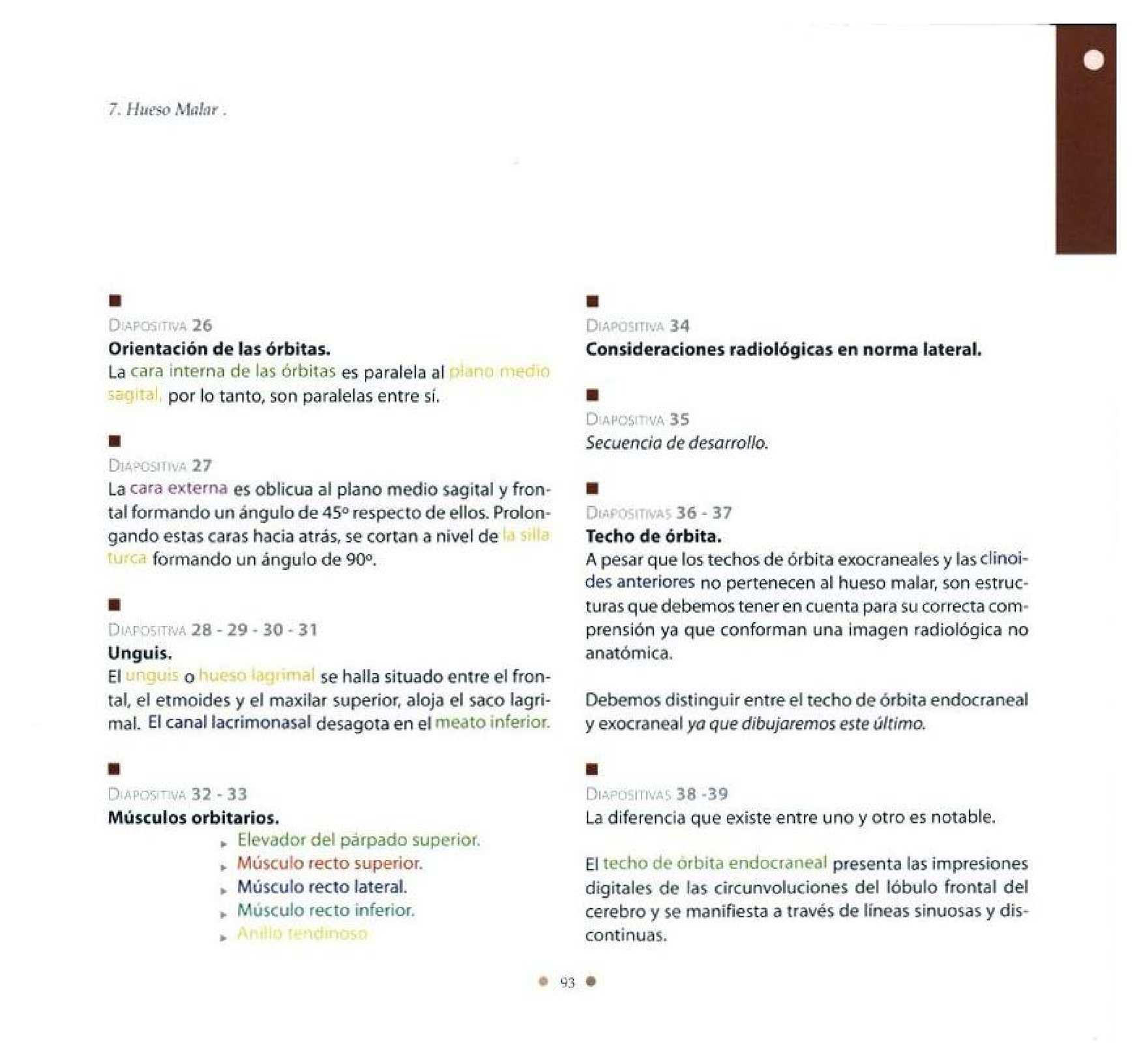 Fantástico Anatomía Cprm Mri Modelo - Imágenes de Anatomía Humana ...