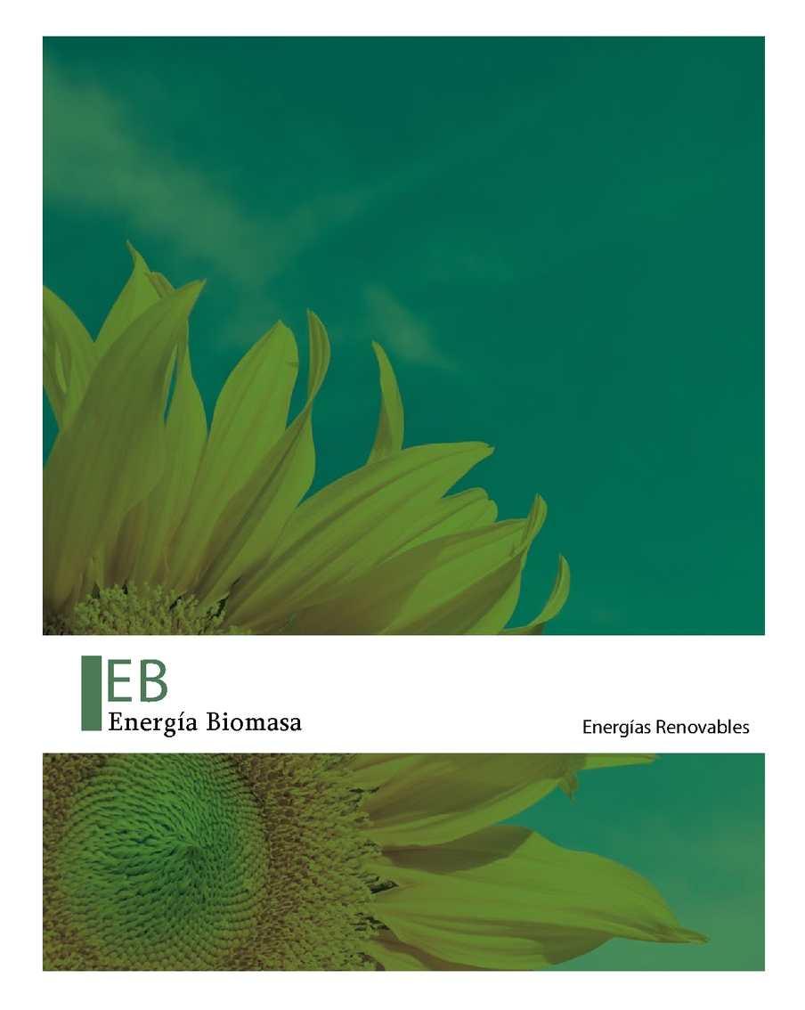 libro_energia_biomasa