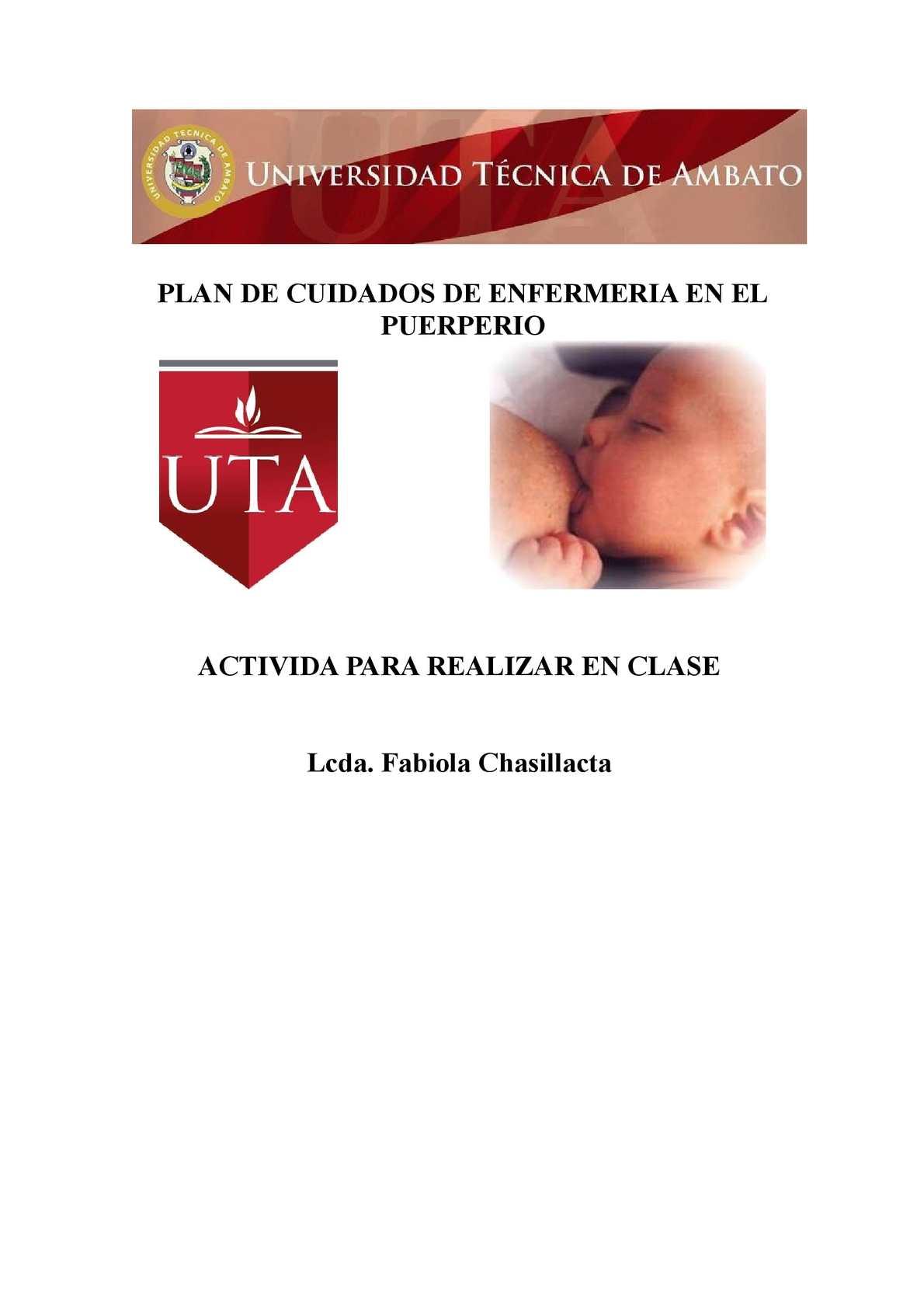 Calaméo - Plan de Cuidados de Enfermeria en el Puerperio