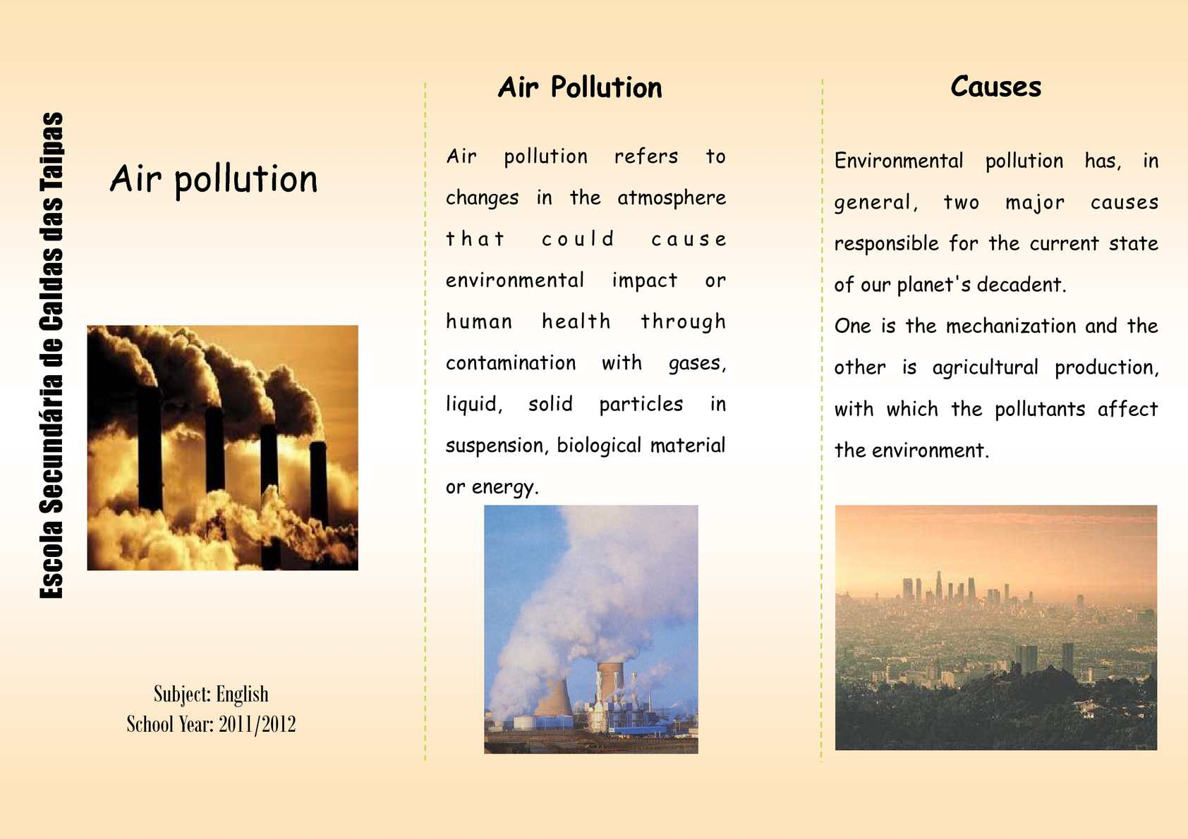 causes of environmental problems essays