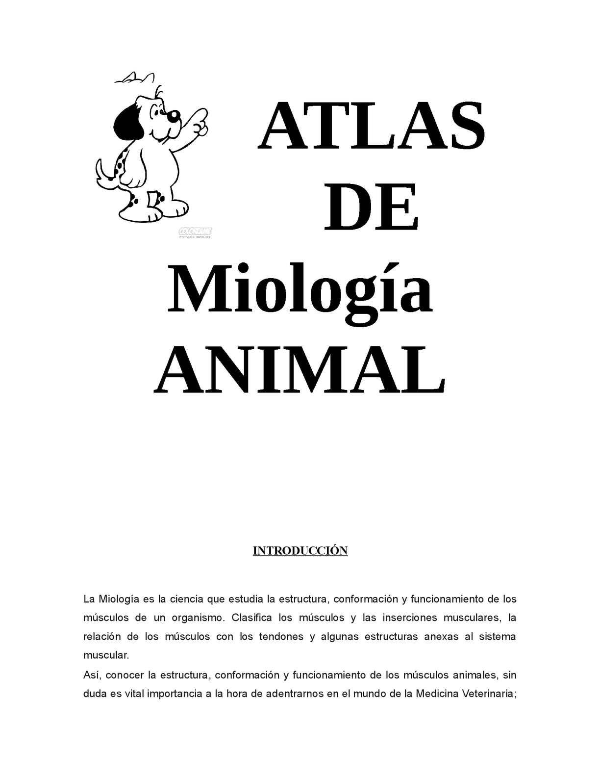 Calaméo - Atlas Miologia
