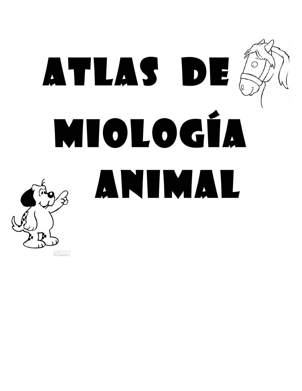 ATLAS-MIOLOGIA