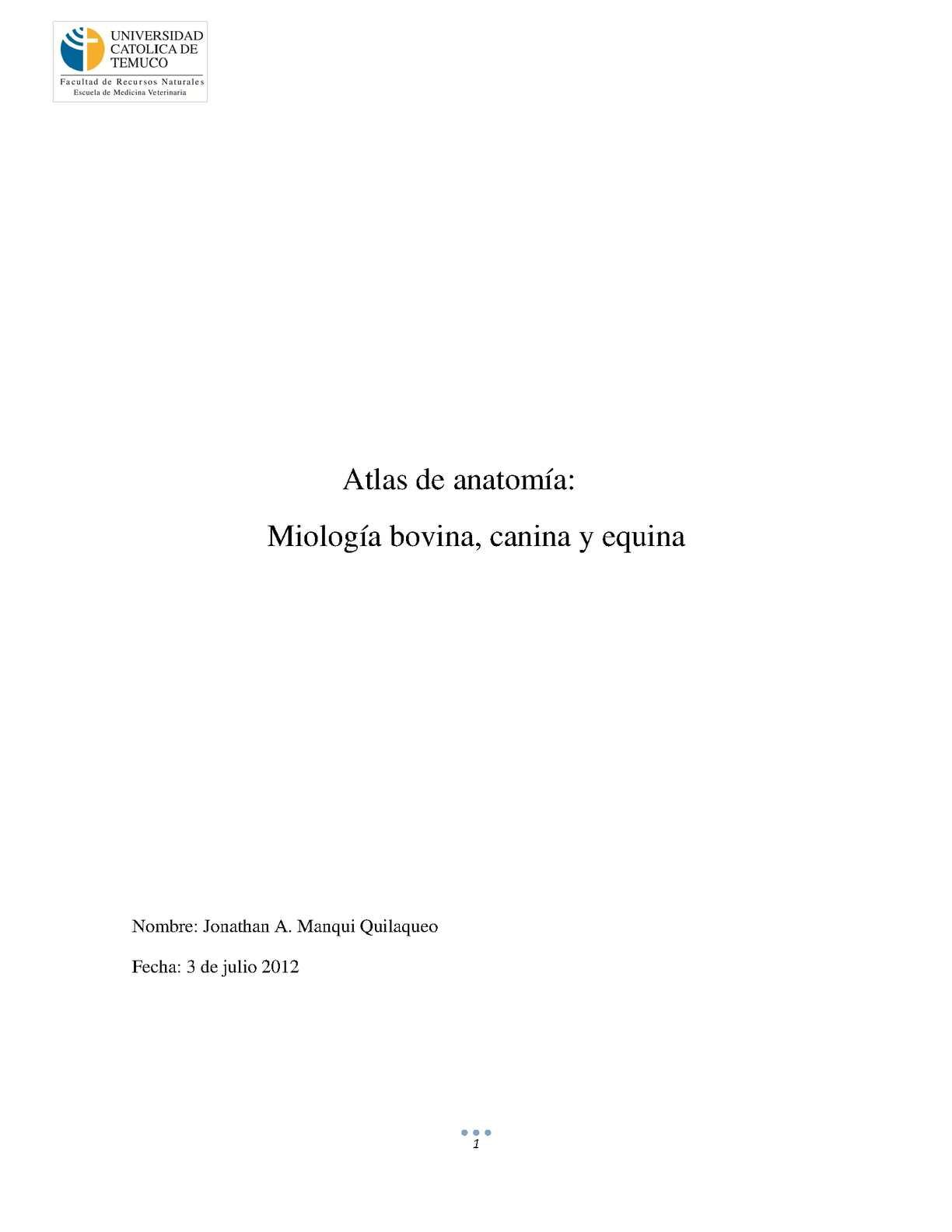 Calaméo - Miologia de bovino, equino y canino