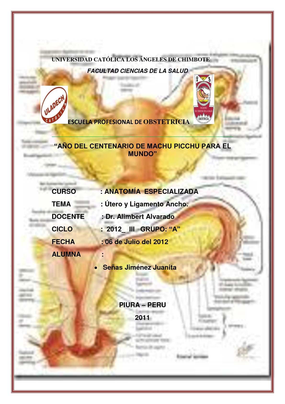 Calaméo - Utero y Ligamento Ancho