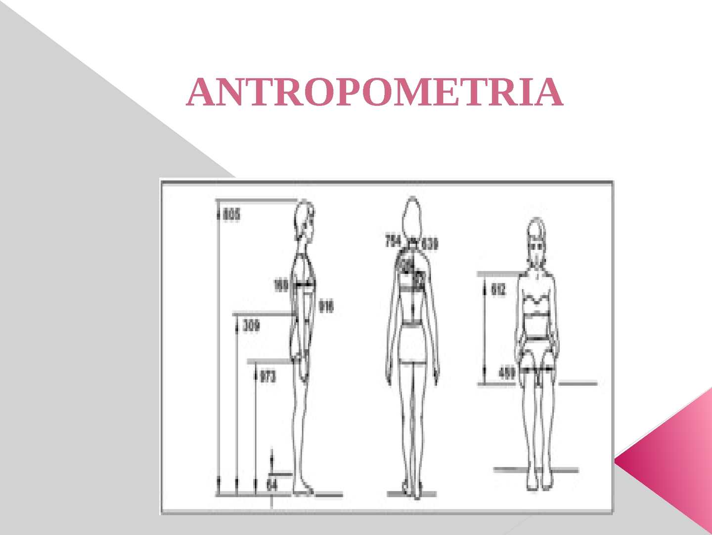 Calam o antropometria 2 for Antropometria medidas