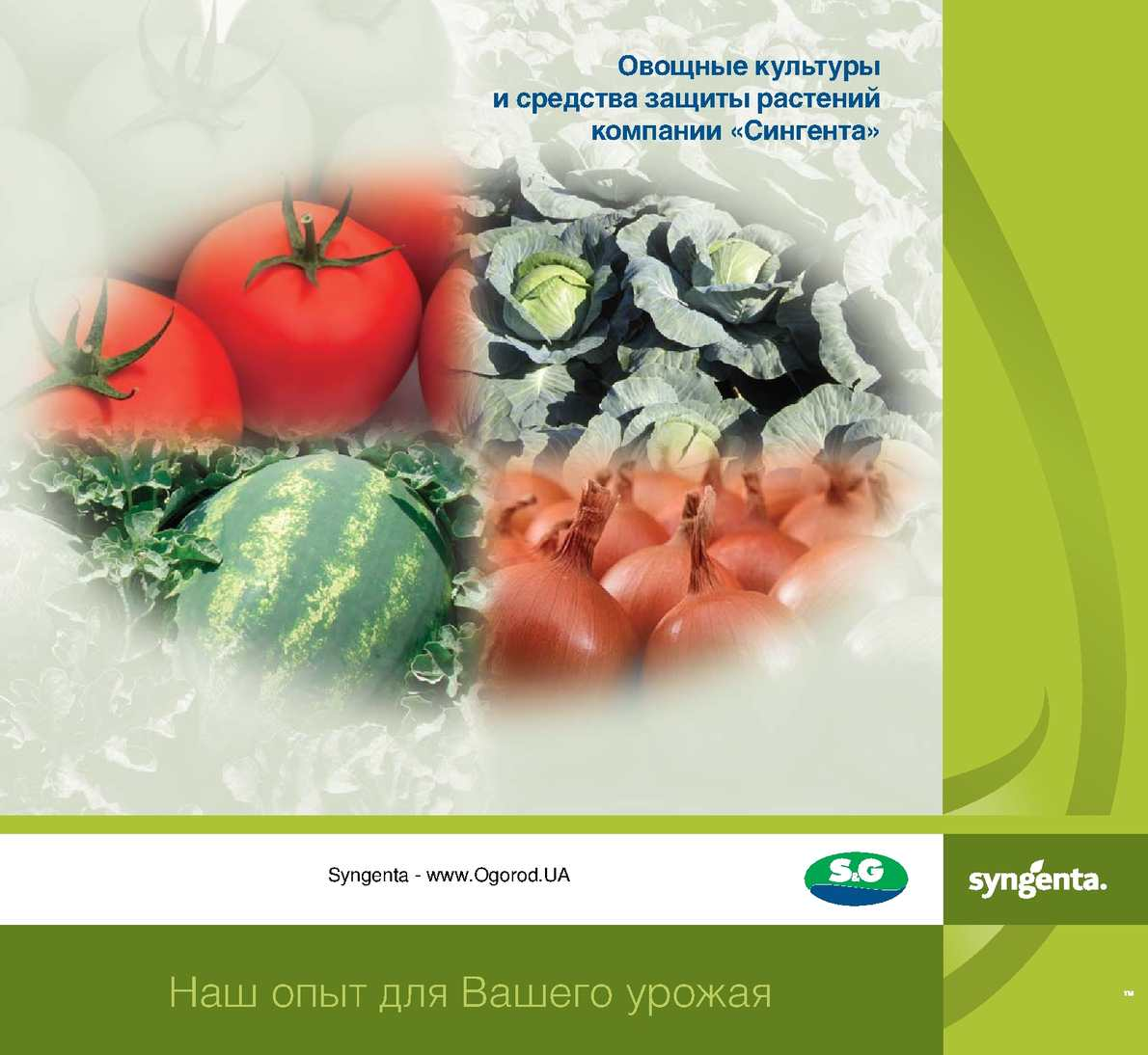 Vegetables-catalog