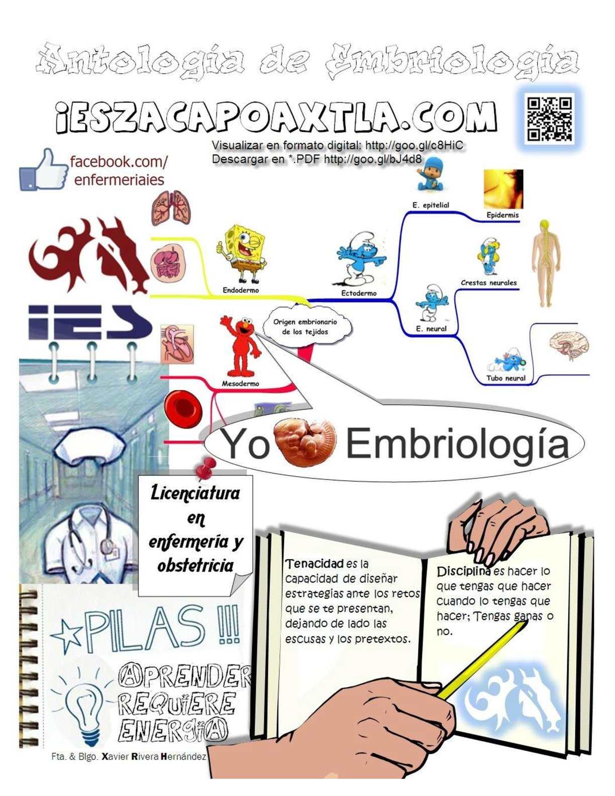 Calaméo - Antología del curso de embriología Enfermería IES Zacapoaxtla