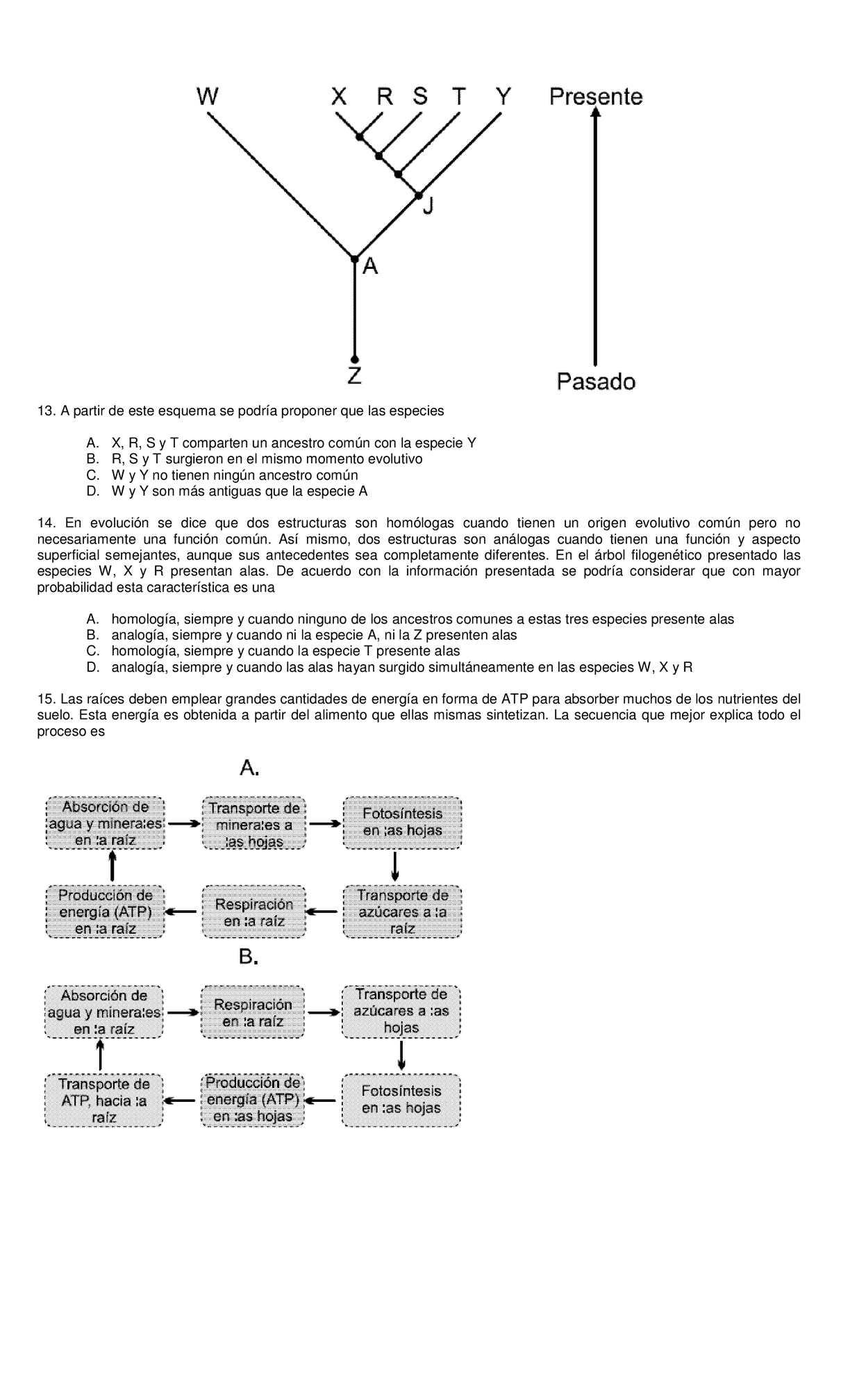 cuestionario biologia - CALAMEO Downloader