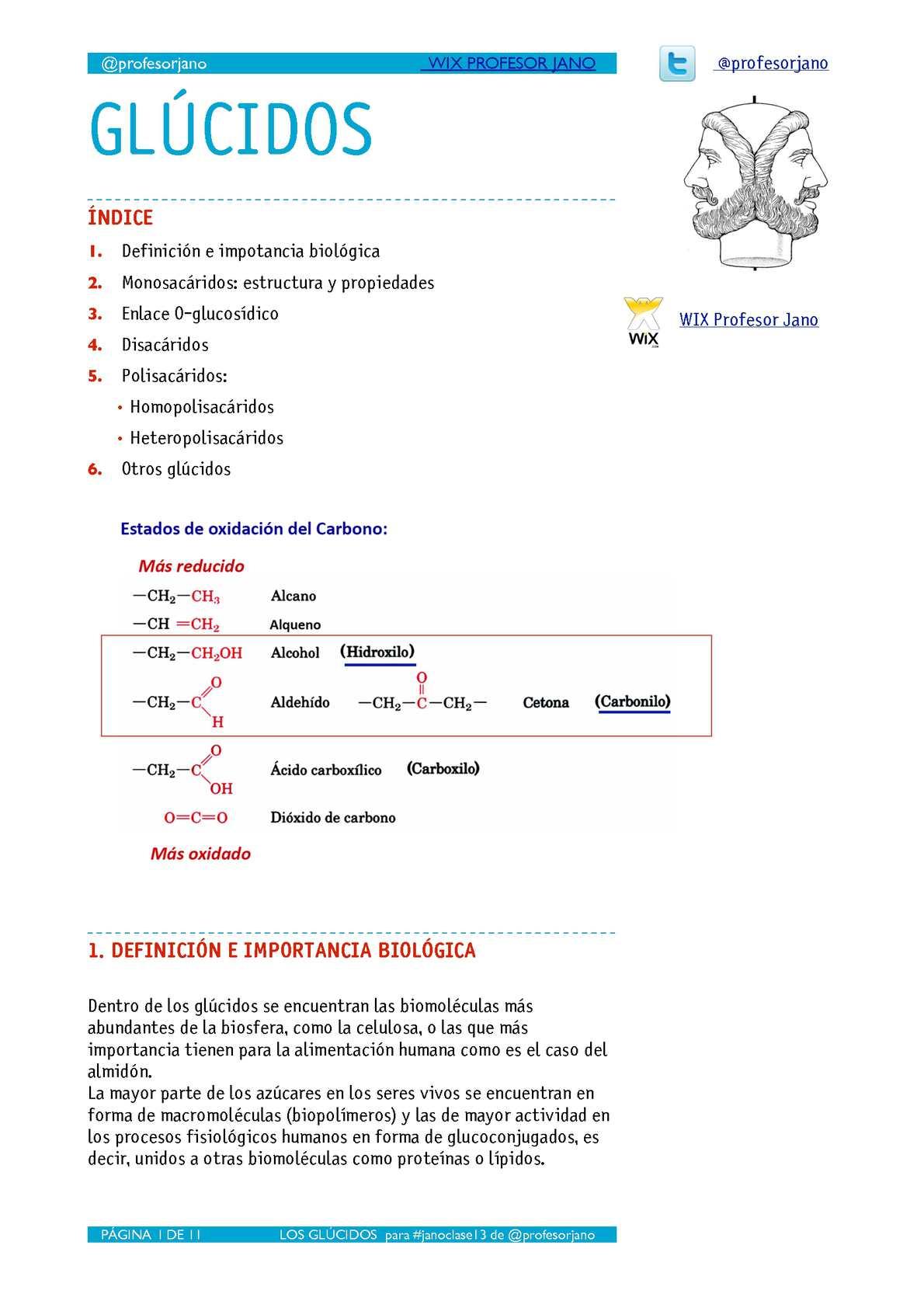 APUNTES DE GLÚCIDOS - 2º bach