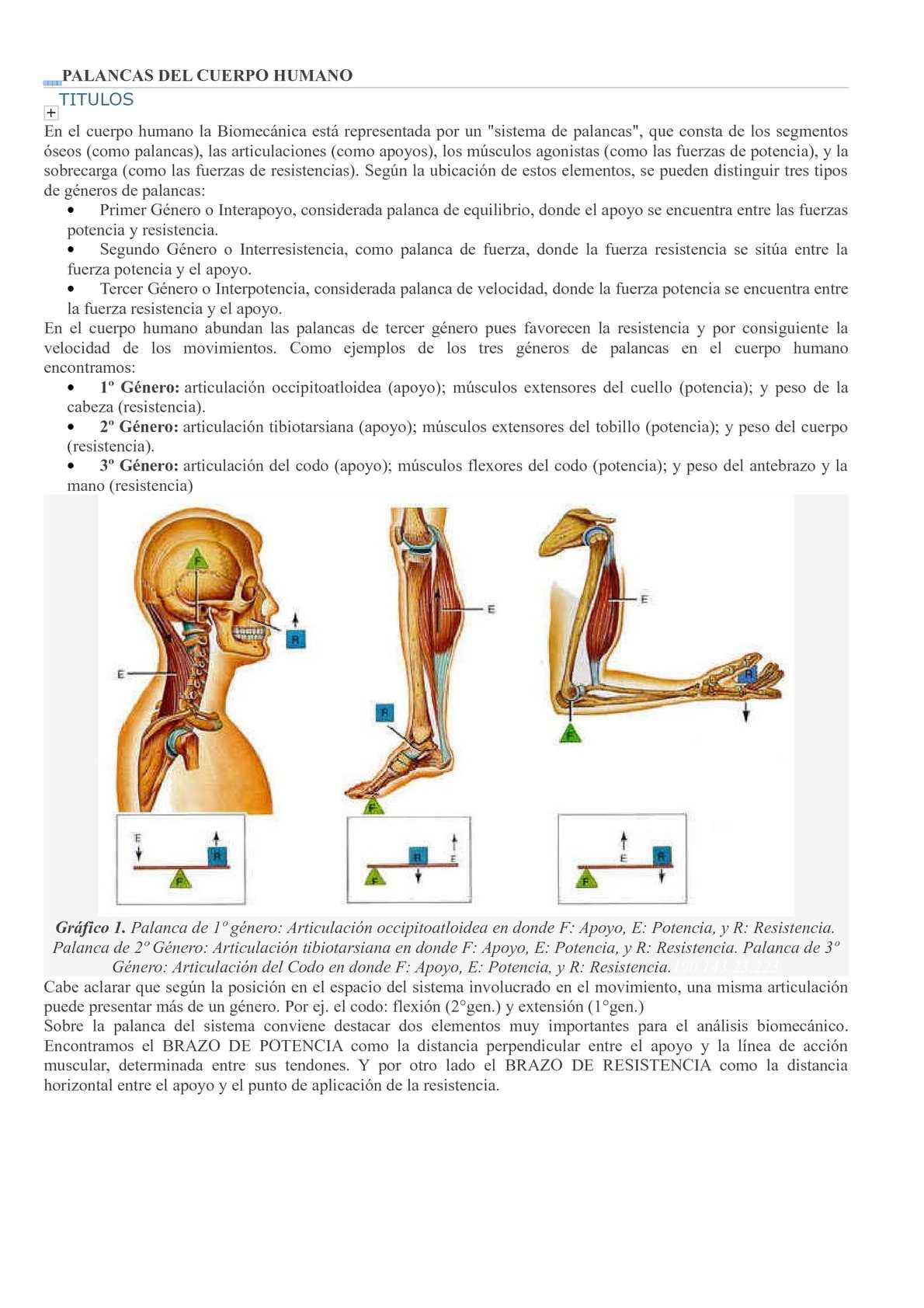 Calaméo - palanca del cuerpo humano