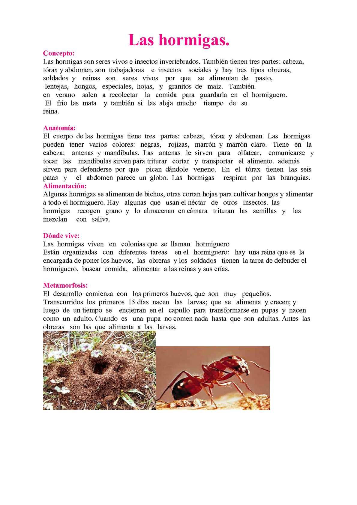 Calaméo - Enciclopedia de Seres Vivos