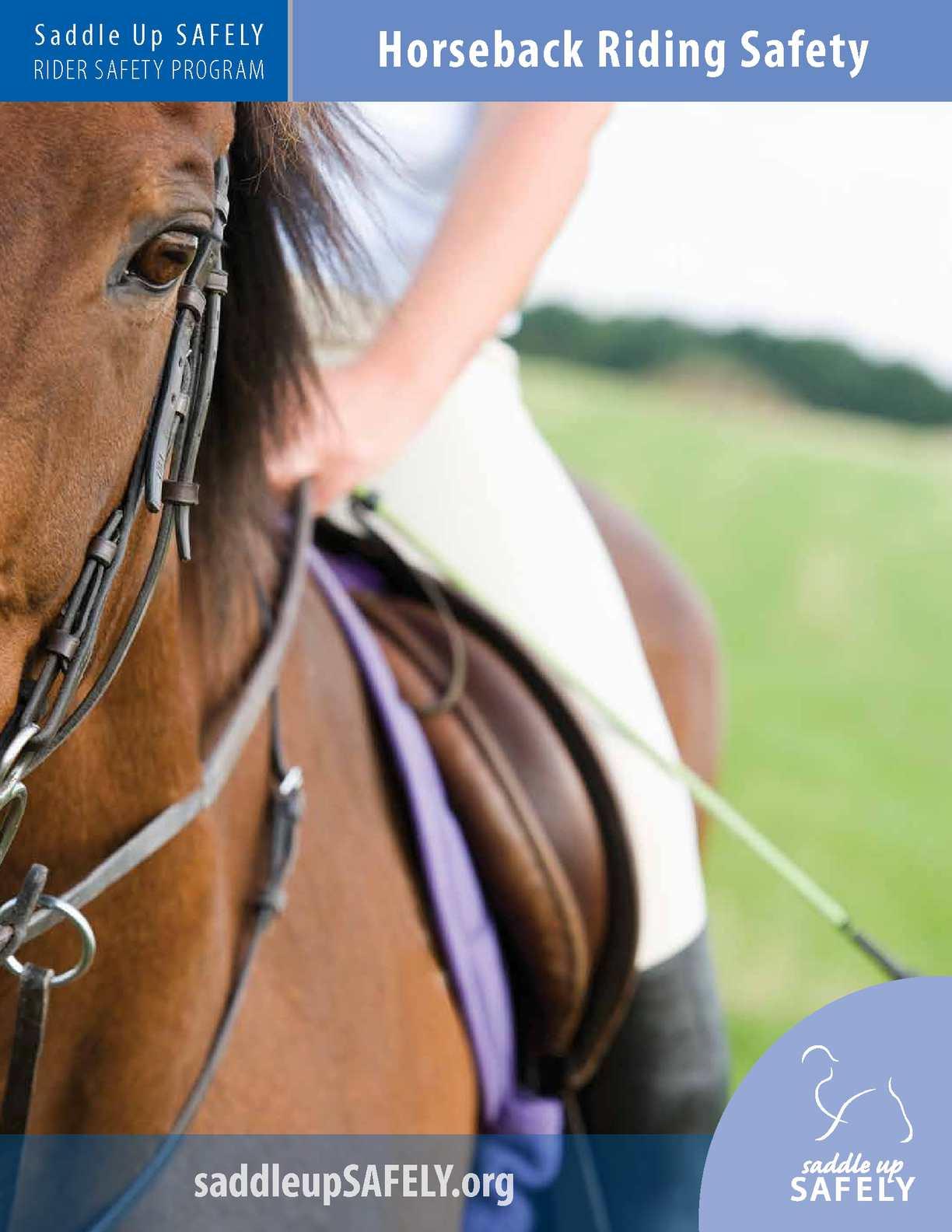 saftey when horseback riding essay