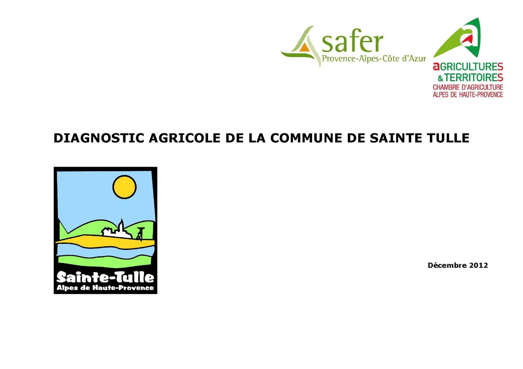 Calaméo Diagnostique agricole Sainte Tulle