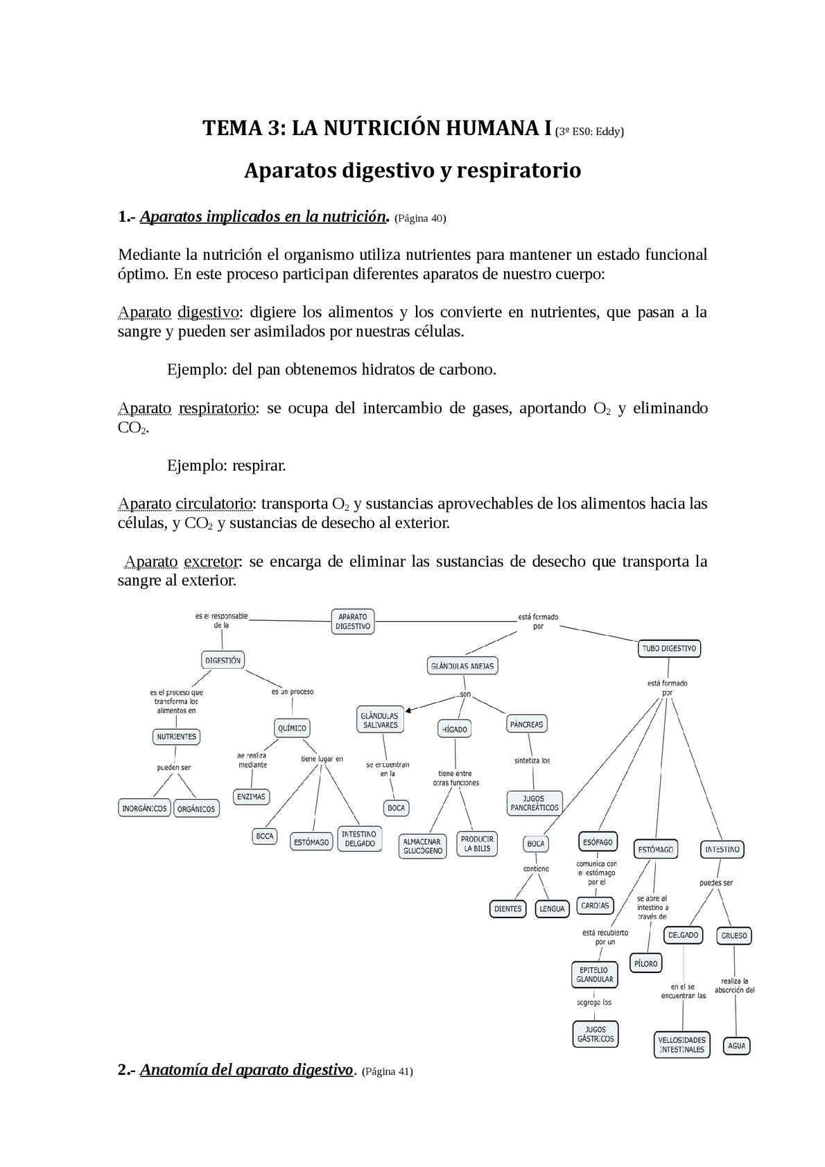 Resumen del tema 3 La nutrición humana I Aparatos digestivo y respiratorio Biología 3º ESO Santillana