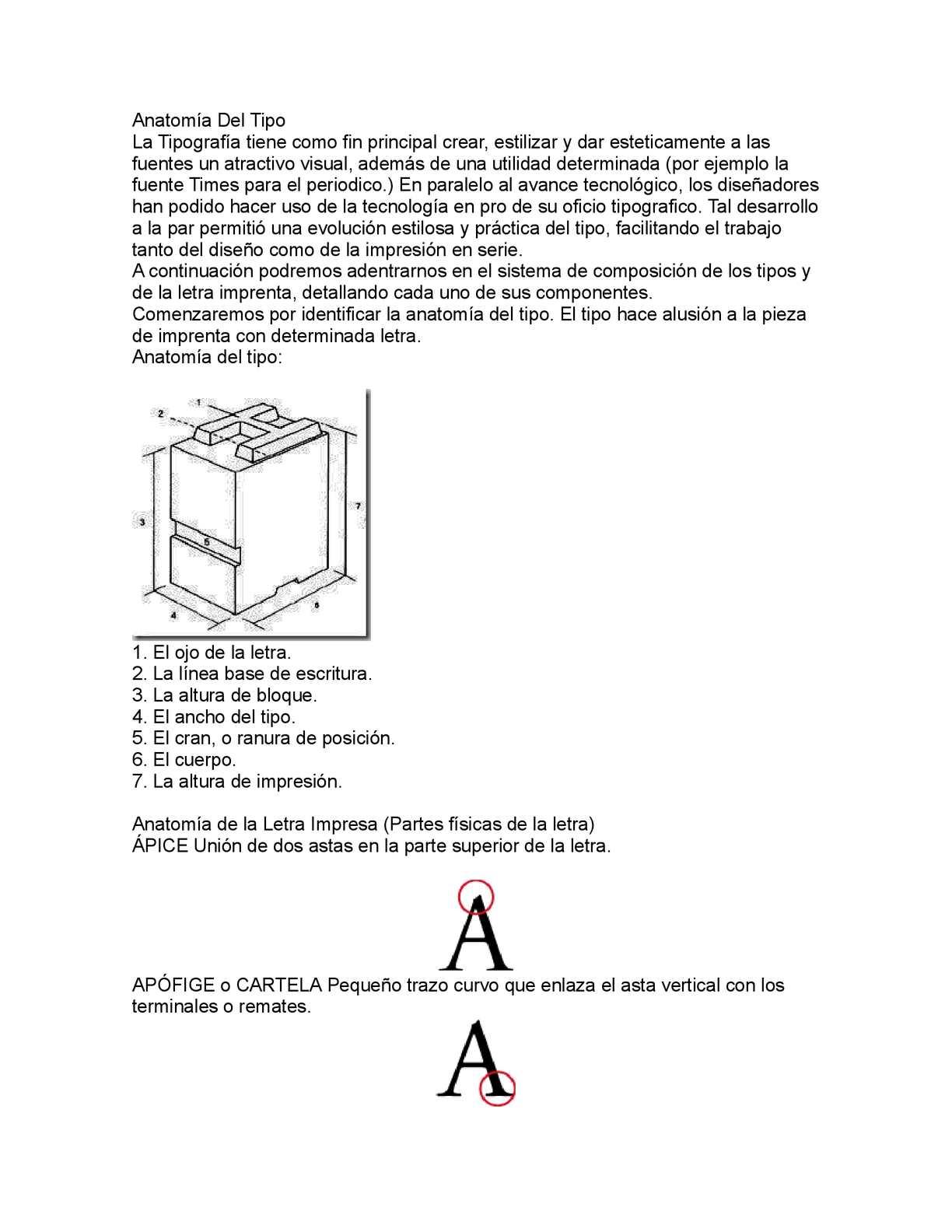 Calaméo - ANATOMÍA DEL TIPO