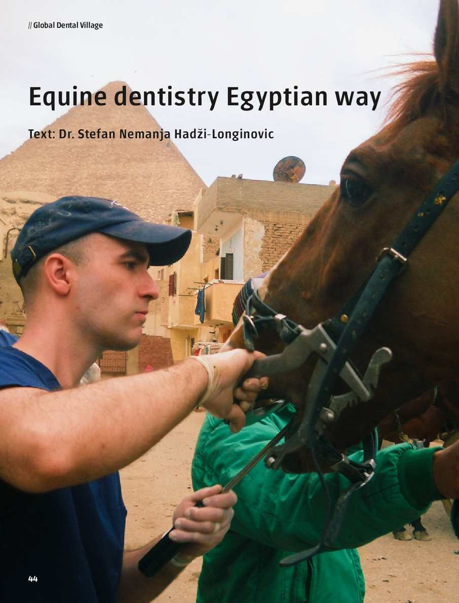 Equine Dentistry the Egyptian Way