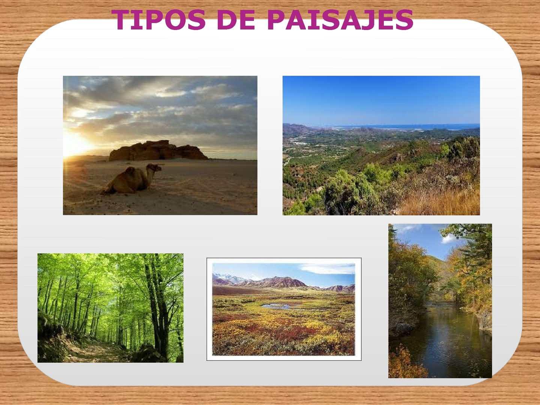 Calam o tipos de paisajes - Tipos de paisajes ...