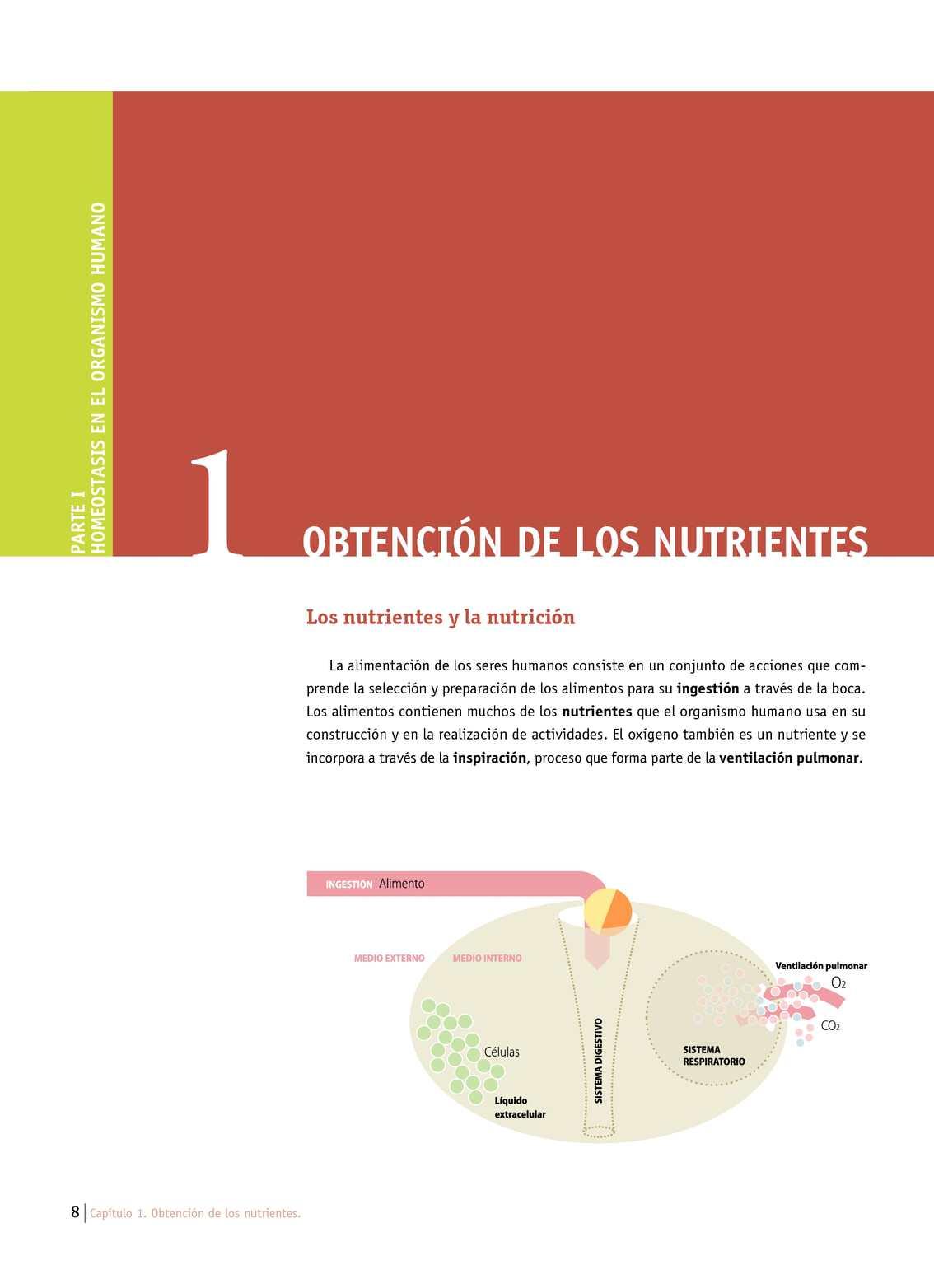 Calaméo - Obtención de los nutrientes