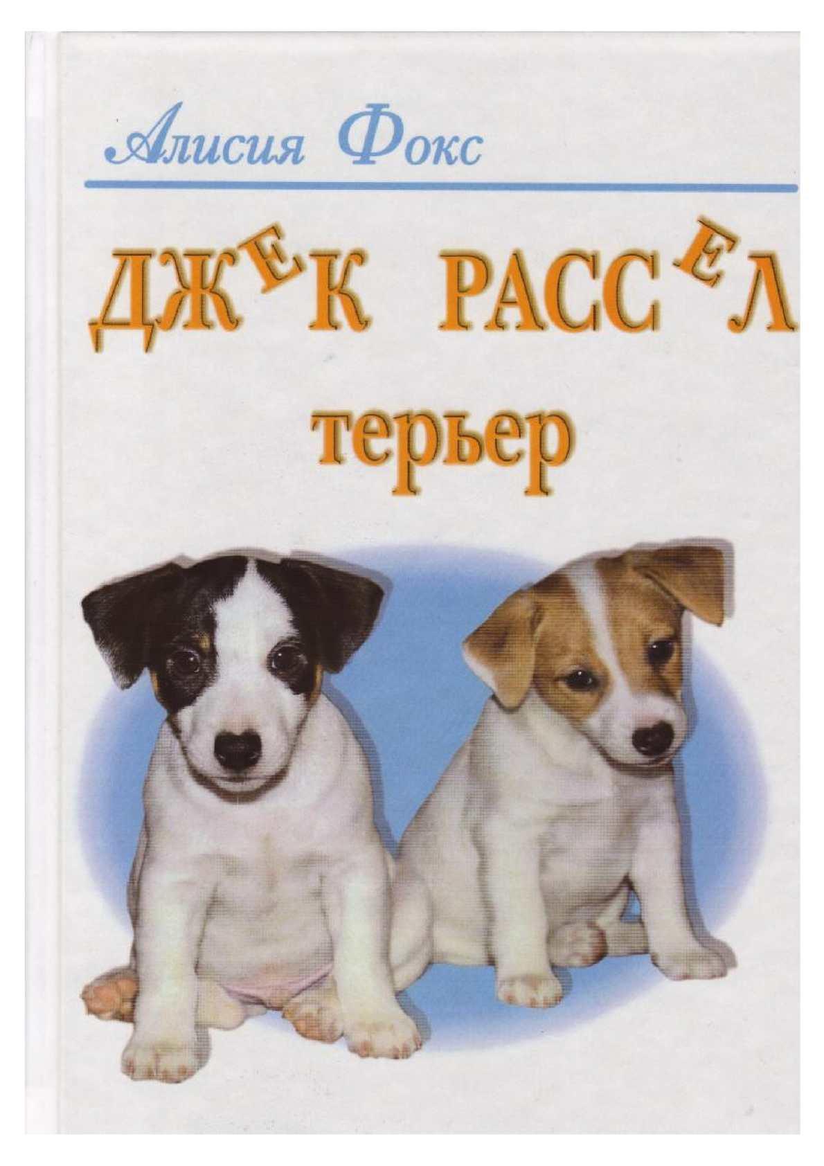 Джек Рассел Терьер, Алисия Фокс