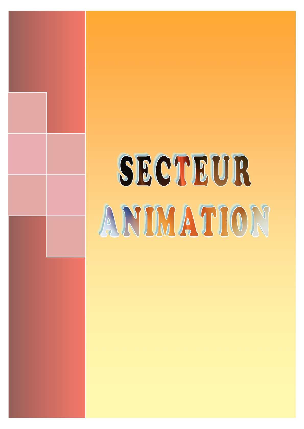 Calaméo - Rapport d'activité du Secteur Animation