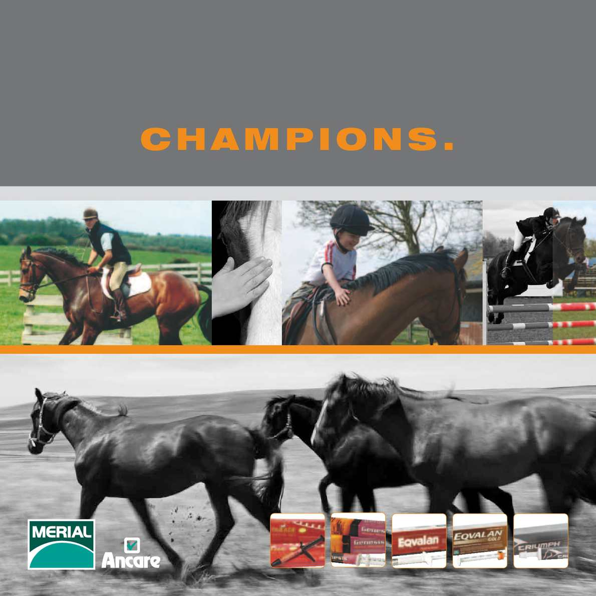 Merial Ancare Equine Products