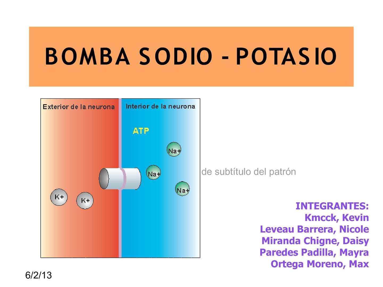 Para que sirve la bomba sodio potasio