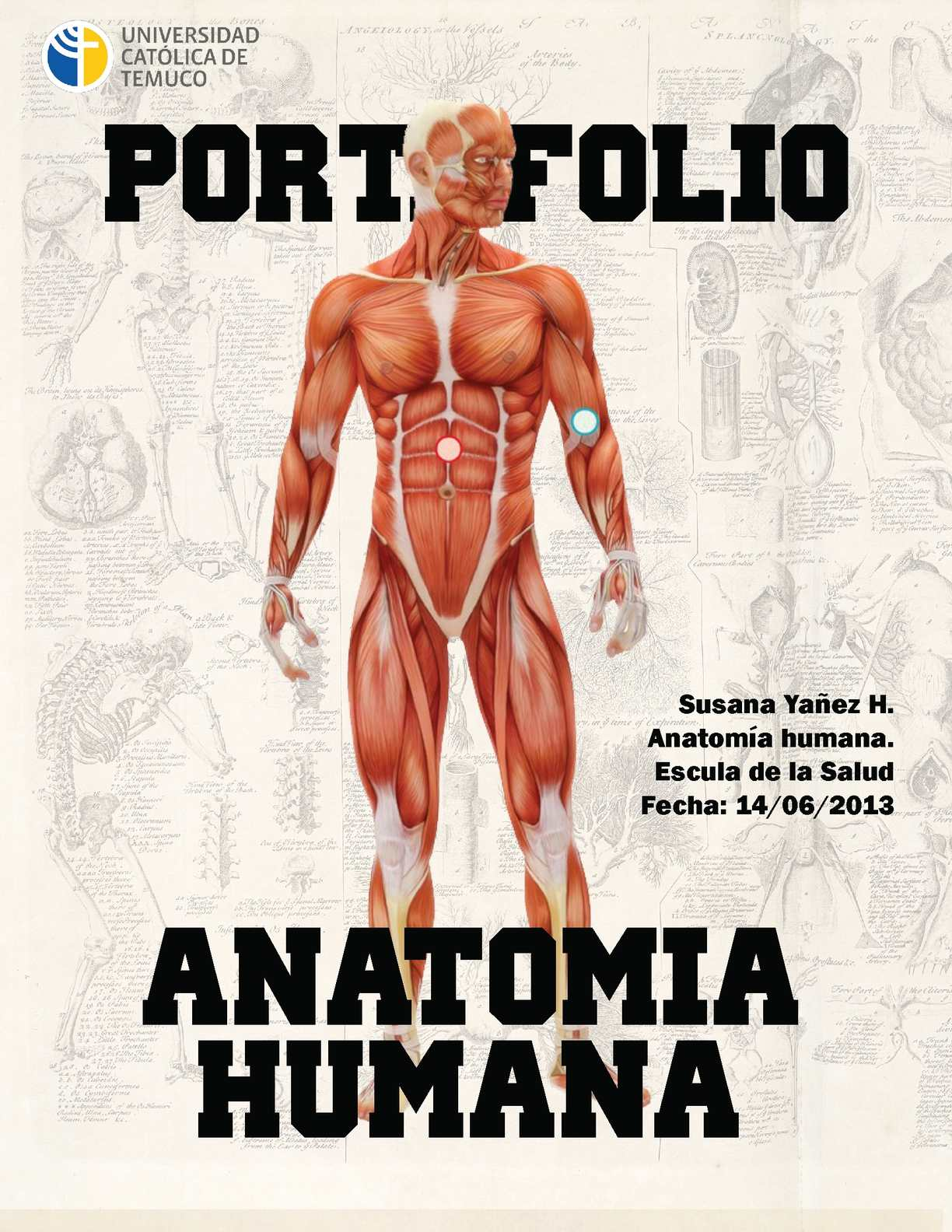 Calaméo - Portafolio Digital, Anatomía Humana- Susana Yañez H